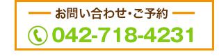 042-718-4231